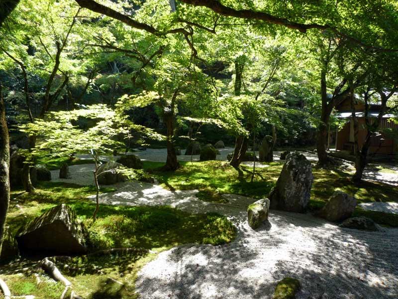 光明禅寺 苔寺の奥庭