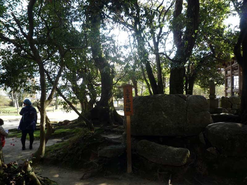 太宰府の観世音寺 五重塔